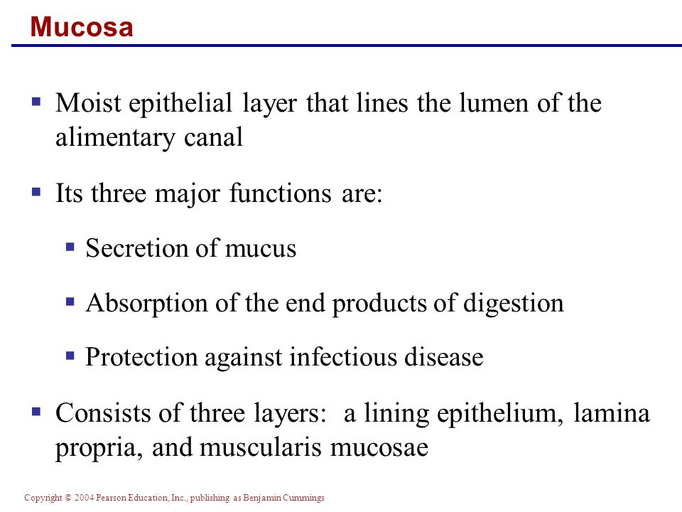 Copyright © 2004 Pearson Education, Inc., publishing as Benjamin Cummings Mucosa: Epithelial Lining  Consists of simple columnar epithelium and mucus- secreting goblet cells  The mucus secretions:  Protect digestive organs from digesting themselves  Ease food along the tract  Stomach and small intestine mucosa contain:  Enzyme-secreting cells  Hormone-secreting cells (making them endocrine and digestive organs)