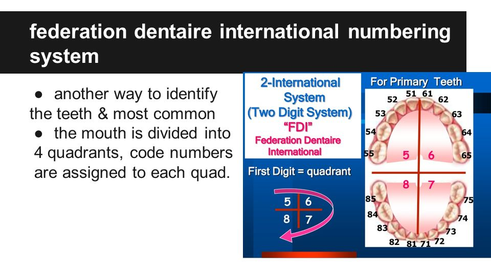 federation dentaire international numbering system ●another way to identify the teeth & most common ●the mouth is divided into 4 quadrants, code numbers are assigned to each quad.