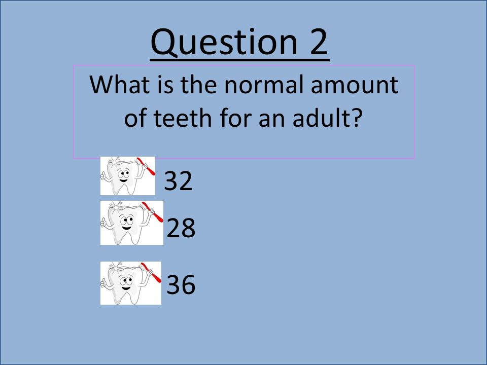 Question 2 What is the normal amount of teeth for an adult 32 28 36