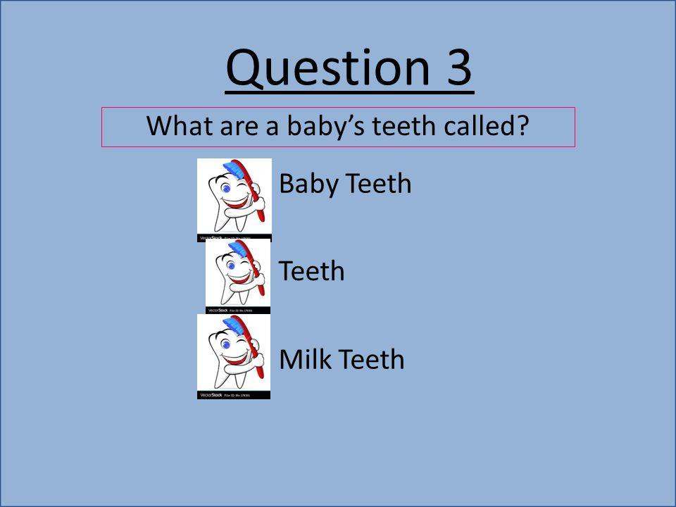 Question 3 What are a baby's teeth called? Baby Teeth Teeth Milk Teeth
