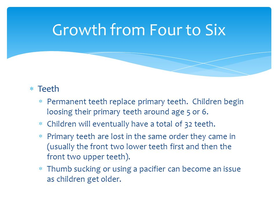  Teeth  Permanent teeth replace primary teeth. Children begin loosing their primary teeth around age 5 or 6.  Children will eventually have a total