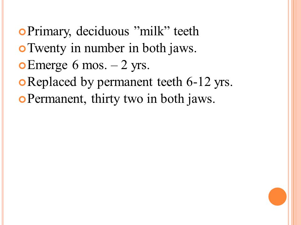 Primary, deciduous milk teeth Twenty in number in both jaws.