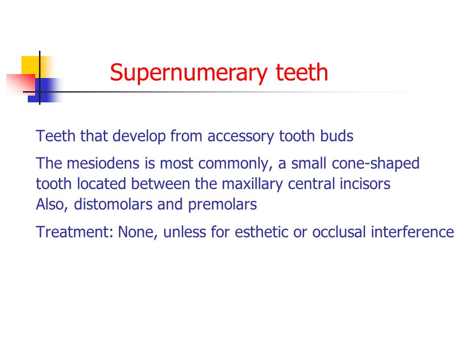 Teeth that develop from accessory tooth buds The mesiodens is most commonly, a small cone-shaped tooth located between the maxillary central incisors Also, distomolars and premolars Treatment: None, unless for esthetic or occlusal interference Supernumerary teeth