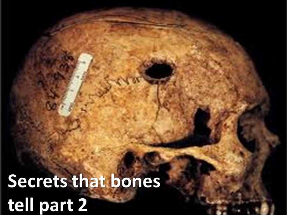 Secrets that bones tell part 2