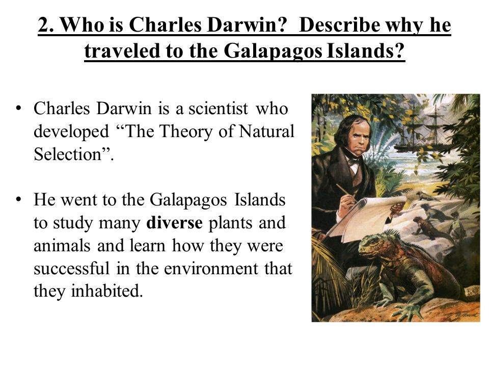 Charles Darwin is a scientist who developed The Theory of Natural Selection .