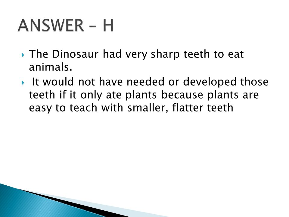  The Dinosaur had very sharp teeth to eat animals.