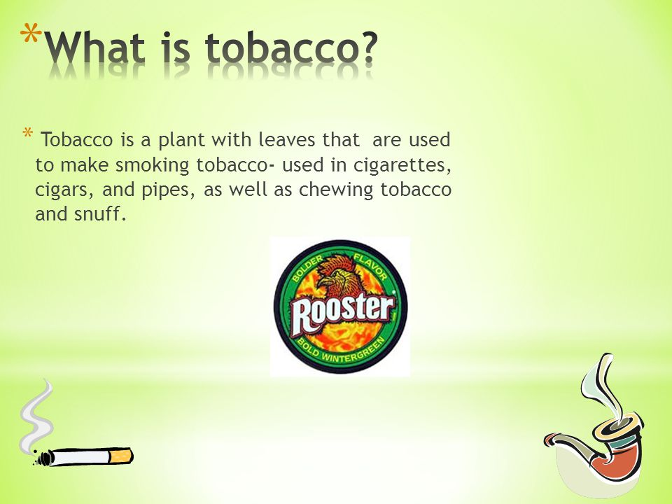 * Tobacco is a plant with leaves that are used to make smoking tobacco- used in cigarettes, cigars, and pipes, as well as chewing tobacco and snuff.