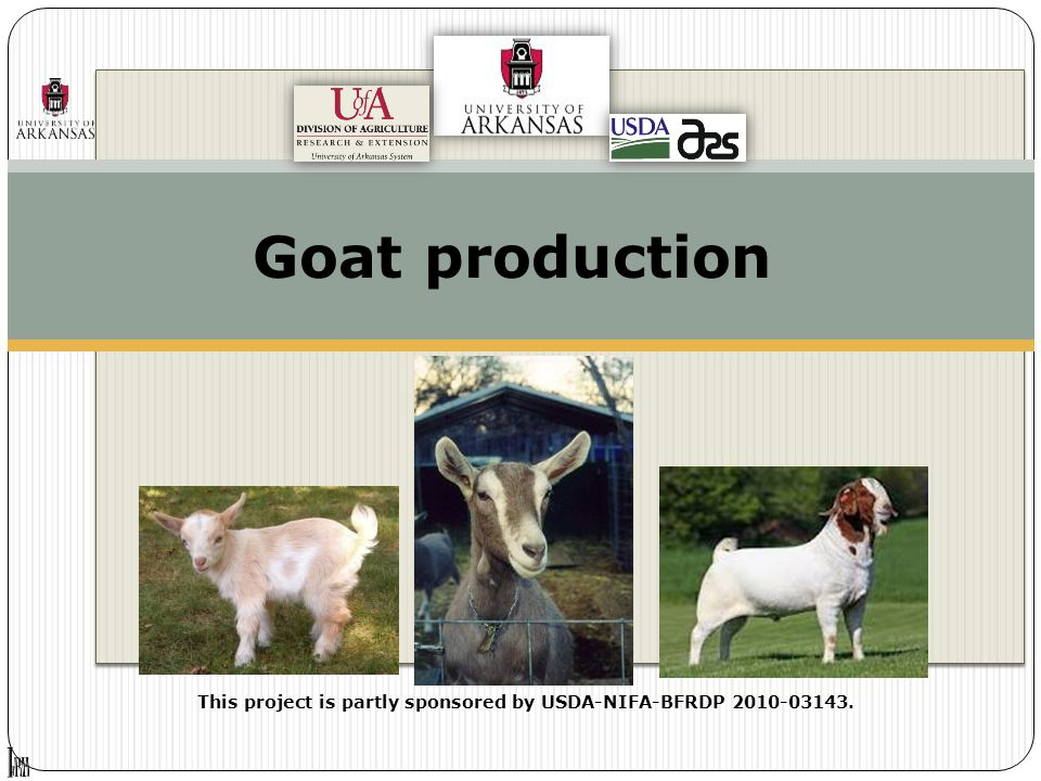 Goat production This project is partly sponsored by USDA-NIFA-BFRDP 2010-03143.