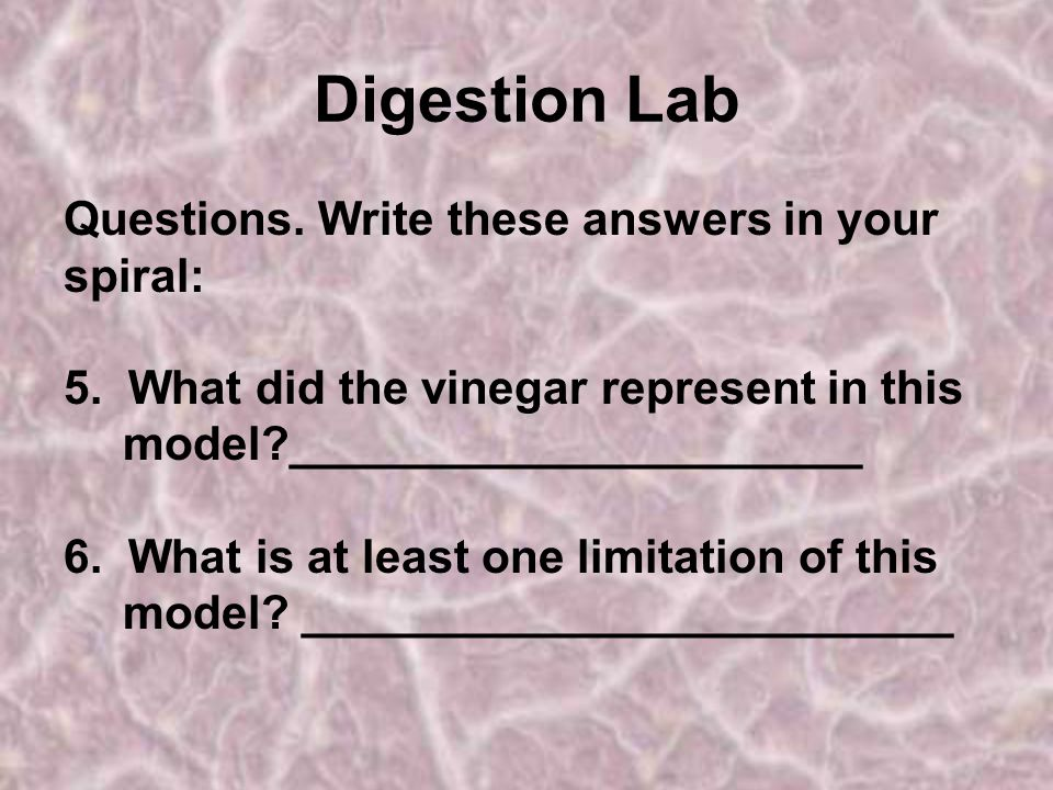 Digestion Lab Questions.Write these answers in your spiral: 5.