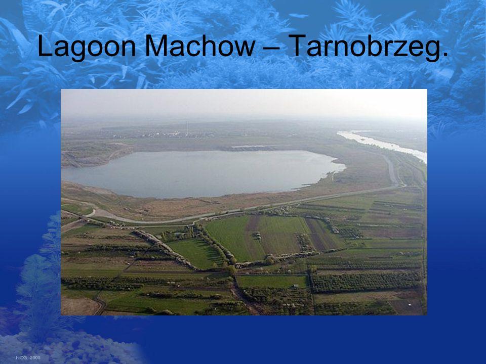 Lagoon Machow – Tarnobrzeg.