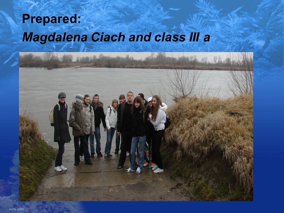 Prepared: Magdalena Ciach and class III a