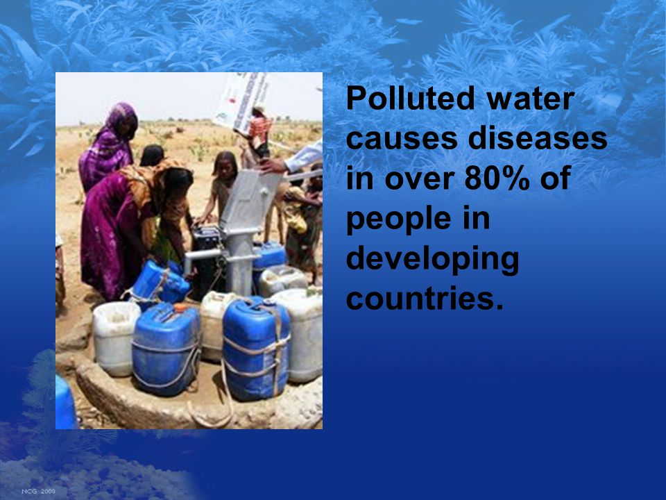 Polluted water causes diseases in over 80% of people in developing countries.