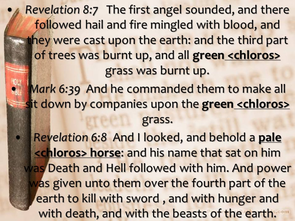 Revelation 8:7 The first angel sounded, and there followed hail and fire mingled with blood, and they were cast upon the earth: and the third part of trees was burnt up, and all green grass was burnt up.Revelation 8:7 The first angel sounded, and there followed hail and fire mingled with blood, and they were cast upon the earth: and the third part of trees was burnt up, and all green grass was burnt up.