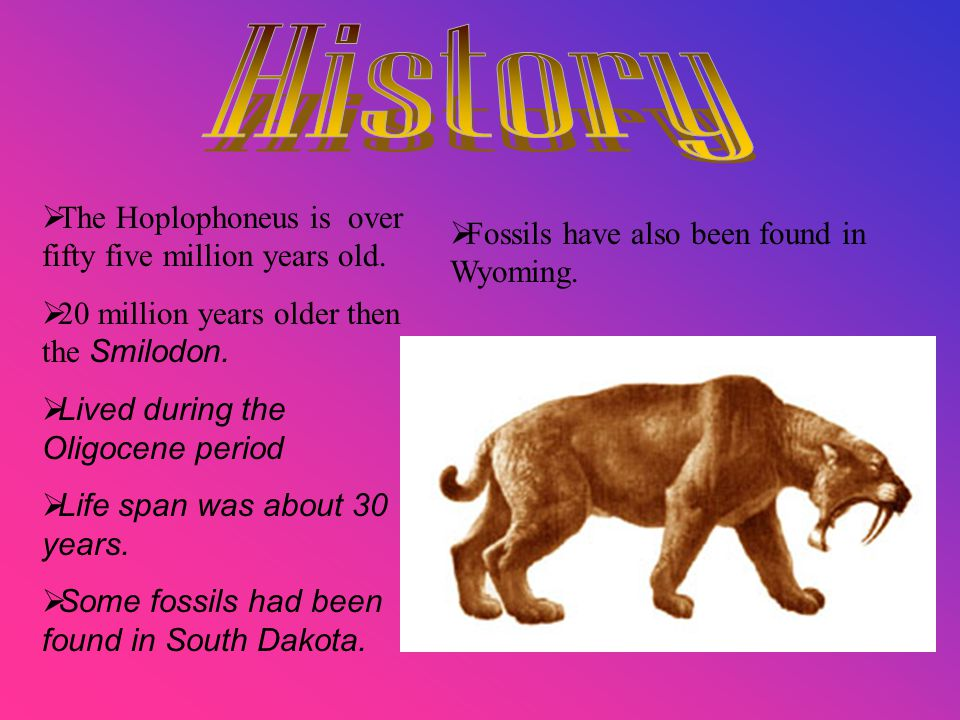  The Hoplophoneus is over fifty five million years old.
