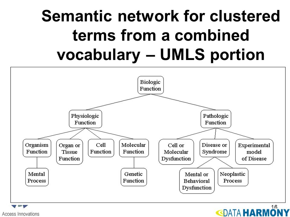 16 Semantic network for clustered terms from a combined vocabulary – UMLS portion