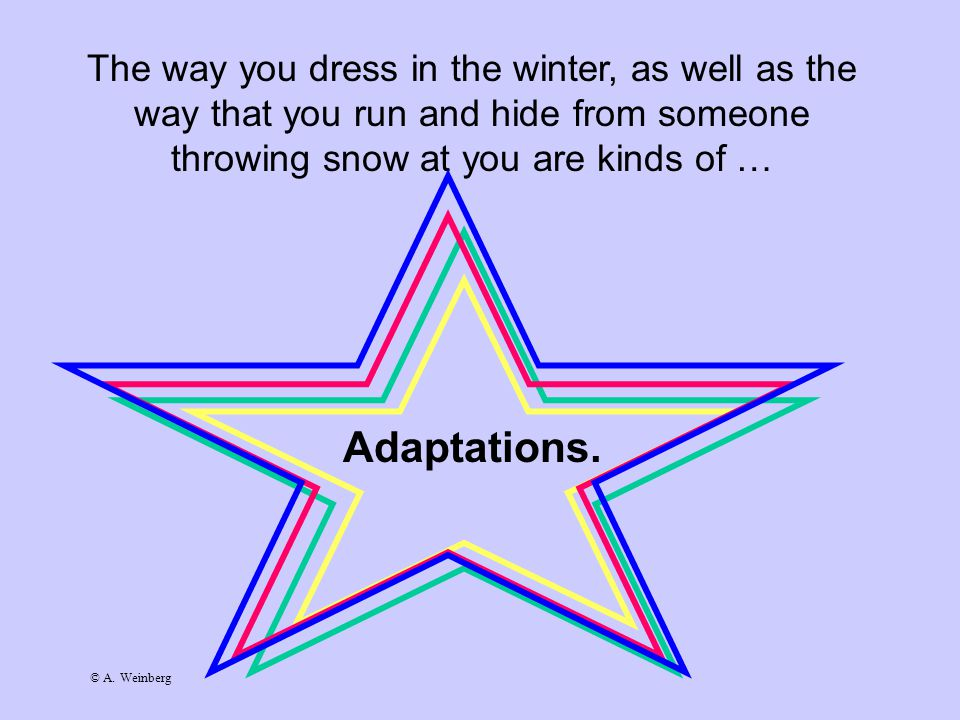 © A. Weinberg The way you dress in the winter, as well as the way that you run and hide from someone throwing snow at you are kinds of … Adaptations.