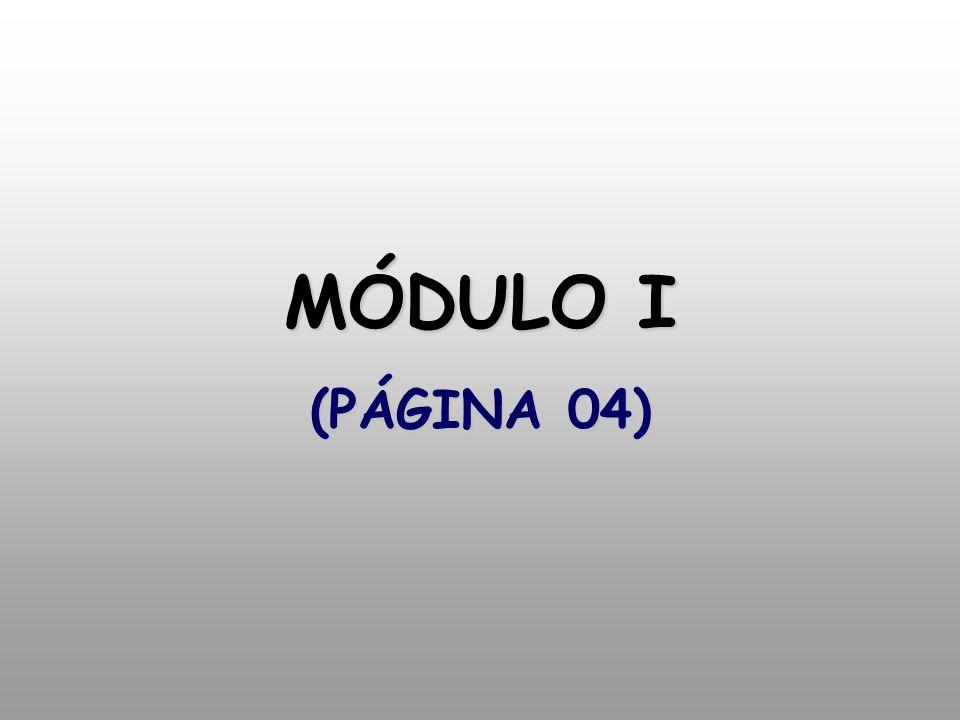 MÓDULO I (PÁGINA 04)