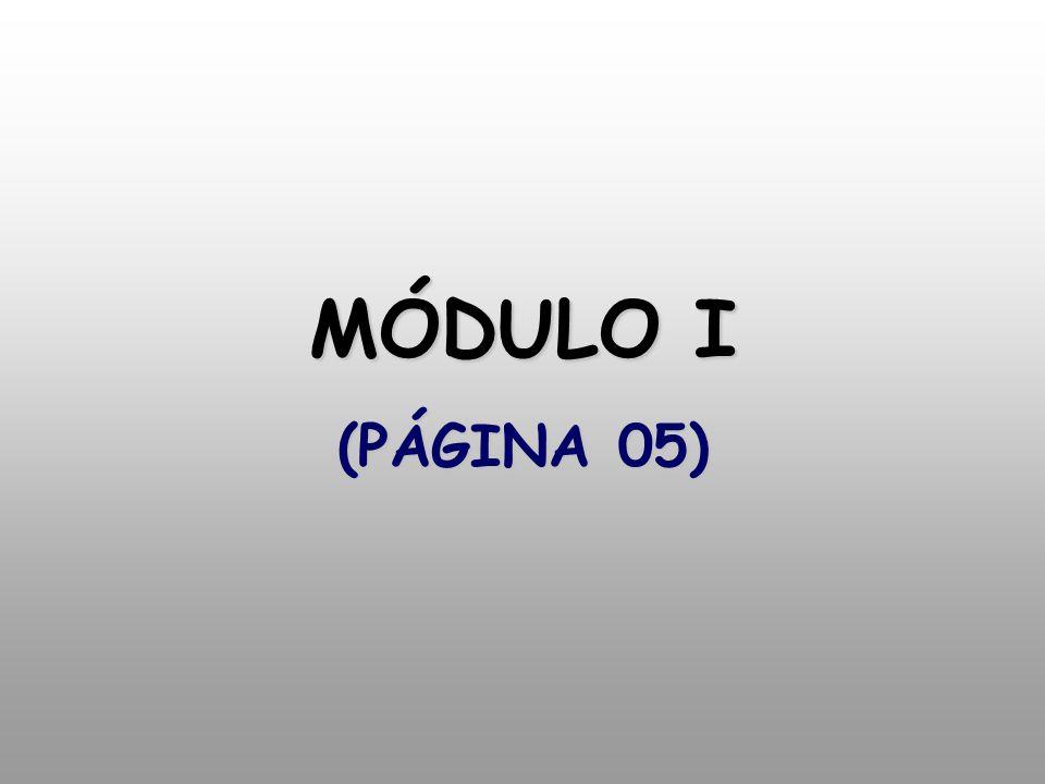 MÓDULO I (PÁGINA 05)