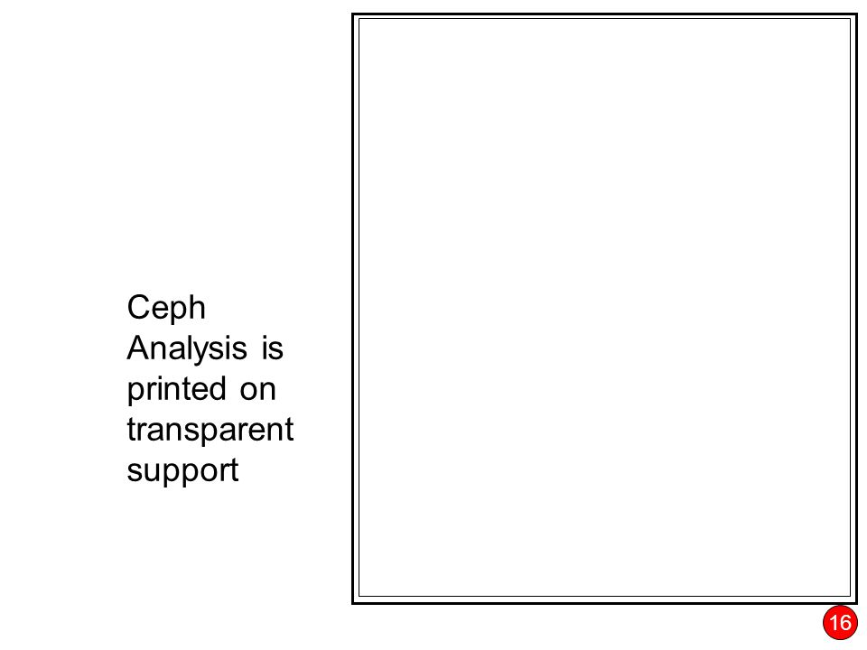 16 Ceph Analysis is printed on transparent support