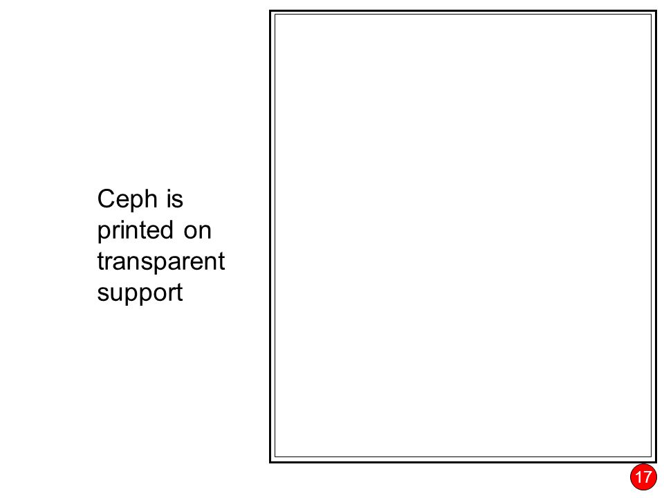 17 Ceph is printed on transparent support