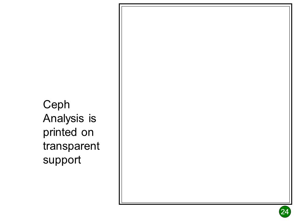 24 Ceph Analysis is printed on transparent support