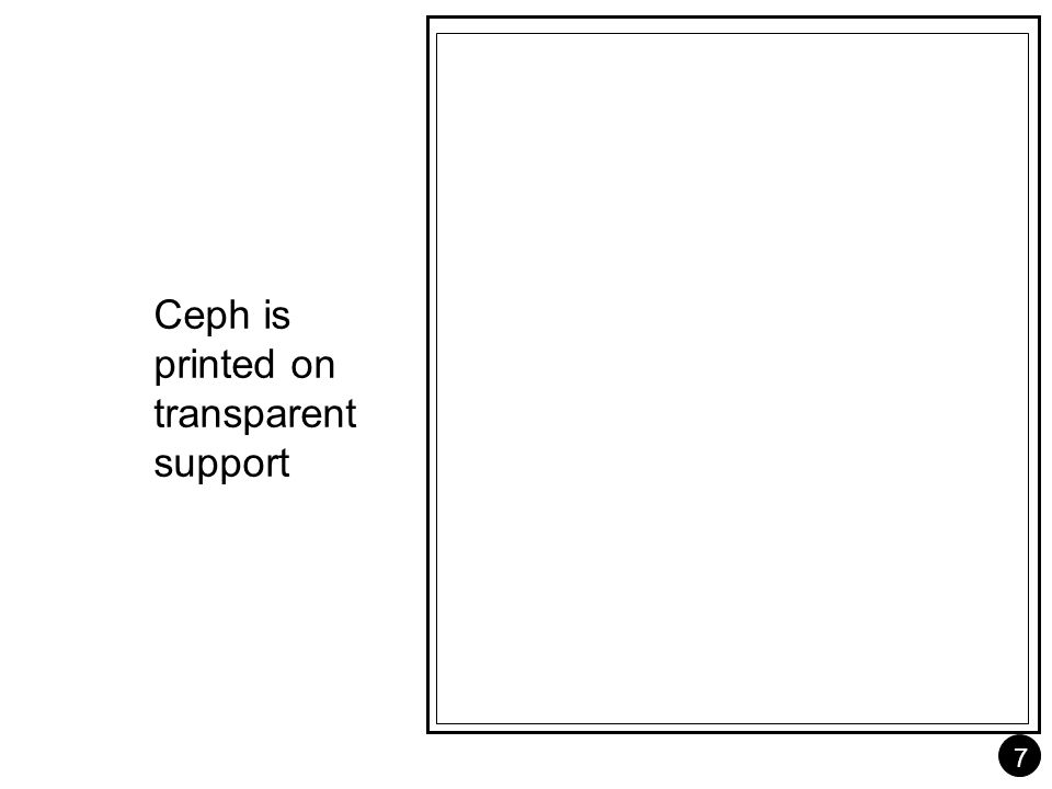 7 Ceph is printed on transparent support