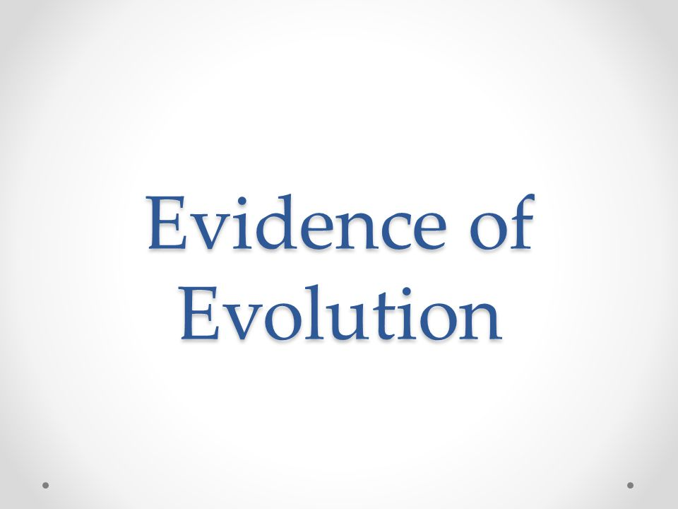 Four Main Types of Evidence 1.Fossils 2.