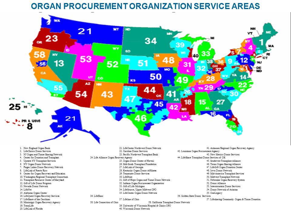 ORGAN PROCUREMENT ORGANIZATION SERVICE AREAS 1. New England Organ Bank21. LifeCenter Northwest Donor Network41. Arkansas Regional Organ Recovery Agenc