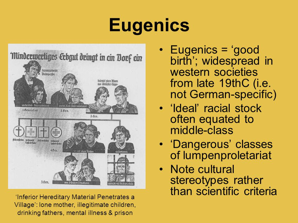 Eugenics Eugenics = 'good birth'; widespread in western societies from late 19thC (i.e. not German-specific) 'Ideal' racial stock often equated to mid