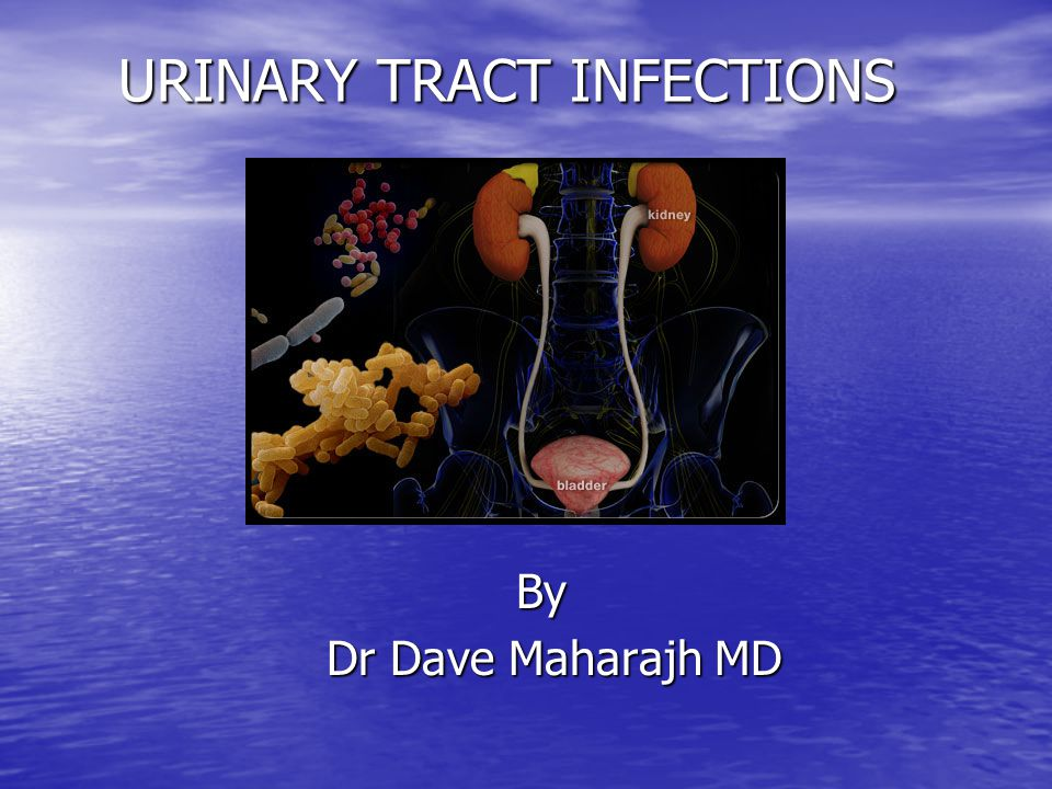 References References Update in Adult Urinary Tract Infection Update in Adult Urinary Tract Infection Lindsay Nicolle Curr.