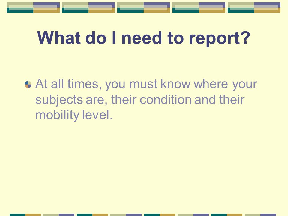 What do I need to report? At all times, you must know where your subjects are, their condition and their mobility level.