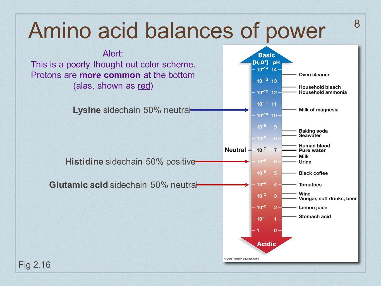 8 Amino acid balances of power Fig 2.16 Histidine sidechain 50% positive Glutamic acid sidechain 50% neutral Lysine sidechain 50% neutral Alert: This is a poorly thought out color scheme.