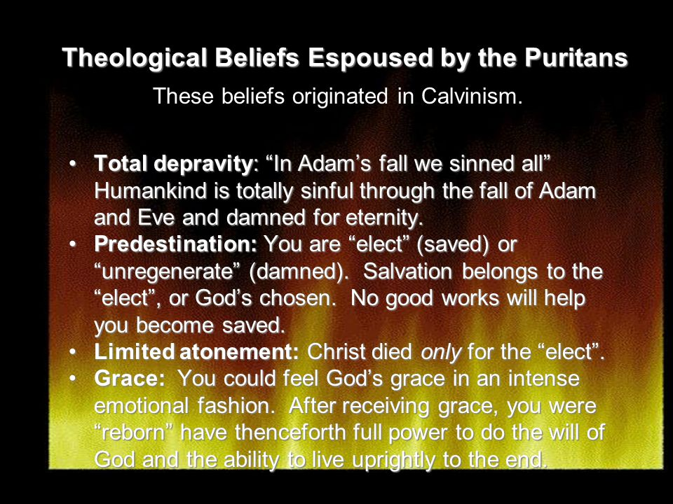 Theological Beliefs Espoused by the Puritans Total depravity: In Adam's fall we sinned all Humankind is totally sinful through the fall of Adam and Eve and damned for eternity.Total depravity: In Adam's fall we sinned all Humankind is totally sinful through the fall of Adam and Eve and damned for eternity.