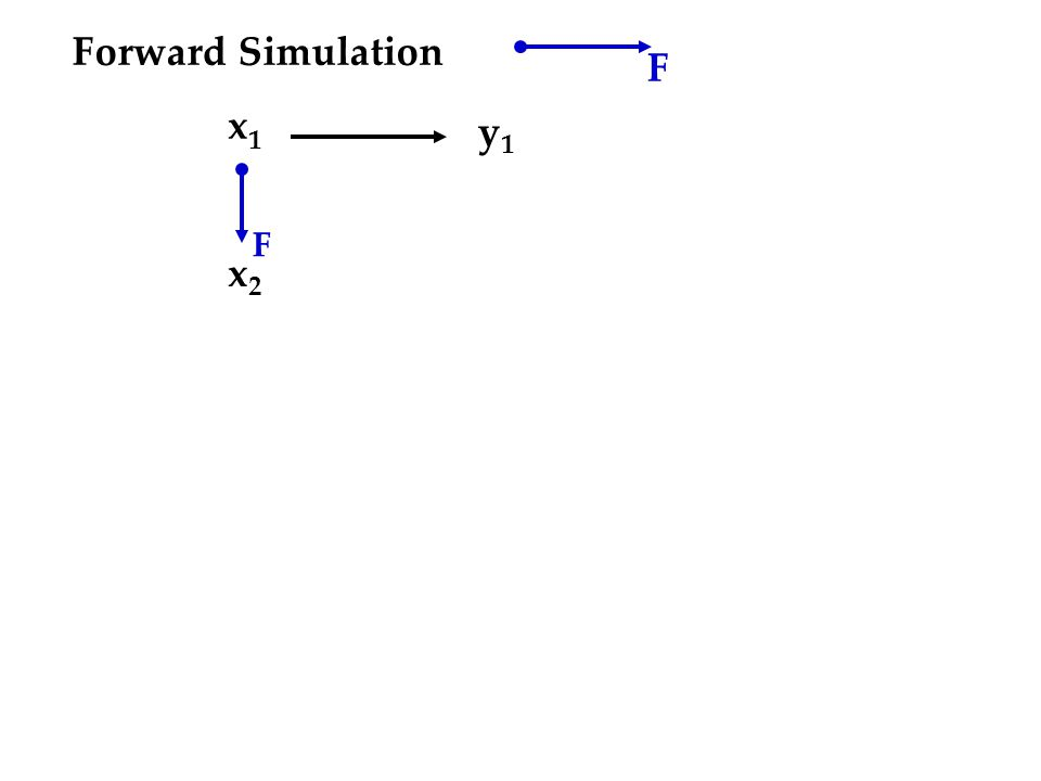 Forward Simulation F x1x1 x2x2 y1y1 F