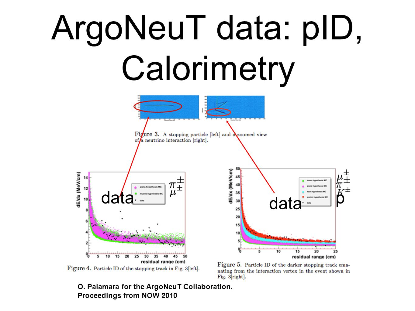 ArgoNeuT data: pID, Calorimetry p data O.