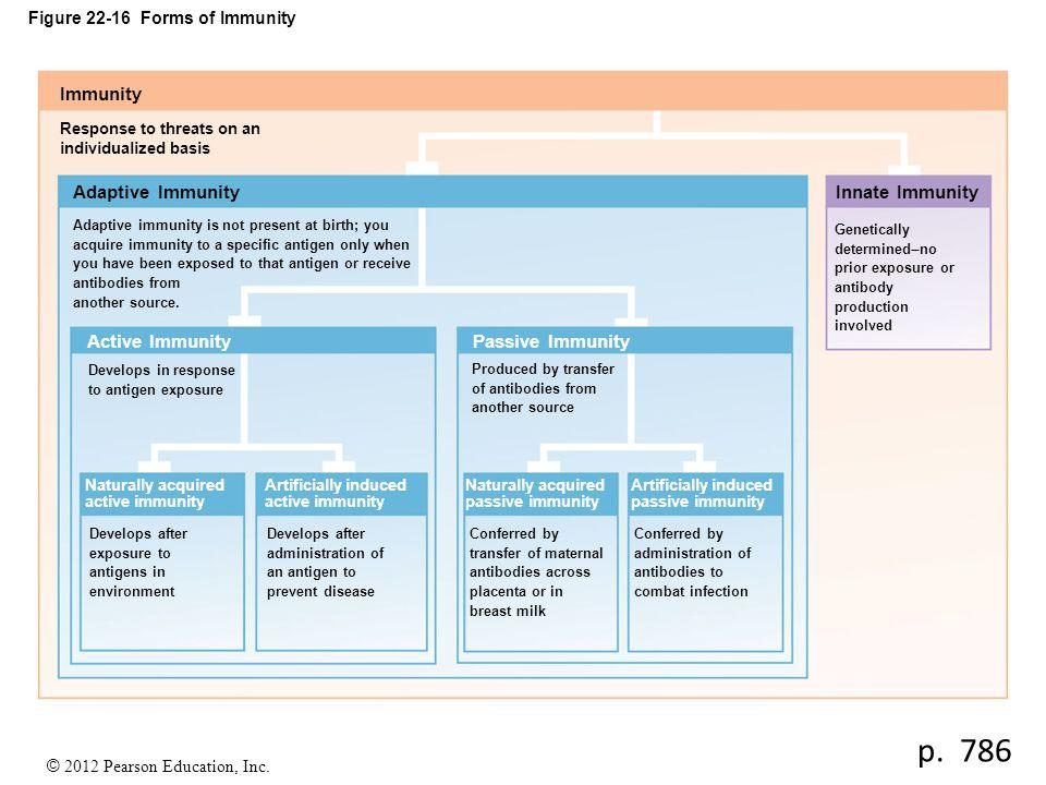© 2012 Pearson Education, Inc. Figure 22-16 Forms of Immunity Immunity Response to threats on an individualized basis Adaptive Immunity Active Immunit
