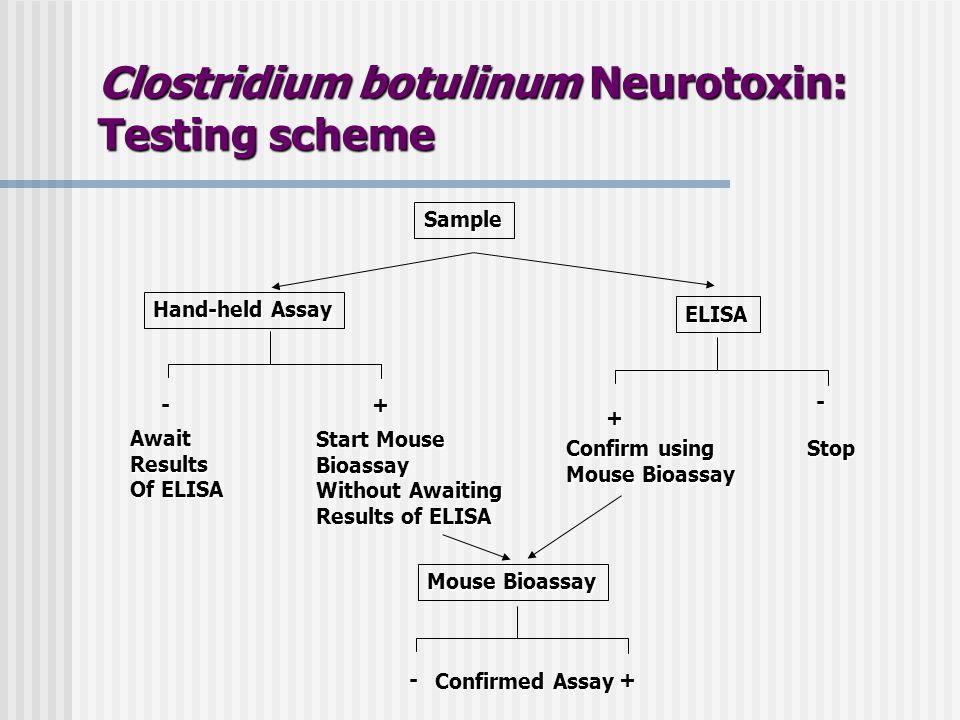 Sample Hand-held Assay ELISA - + - + AwaitResults Of ELISA Stop Start Mouse Bioassay Without Awaiting Results of ELISA Mouse Bioassay -+ Confirm using Mouse Bioassay Confirmed Assay Clostridium botulinum Neurotoxin: Testing scheme