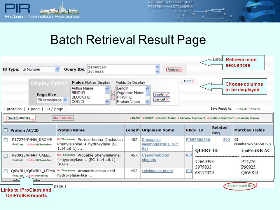 Batch Retrieval Result Page Choose columns to be displayed Retrieve more sequences Links to iProClass and UniProtKB reports