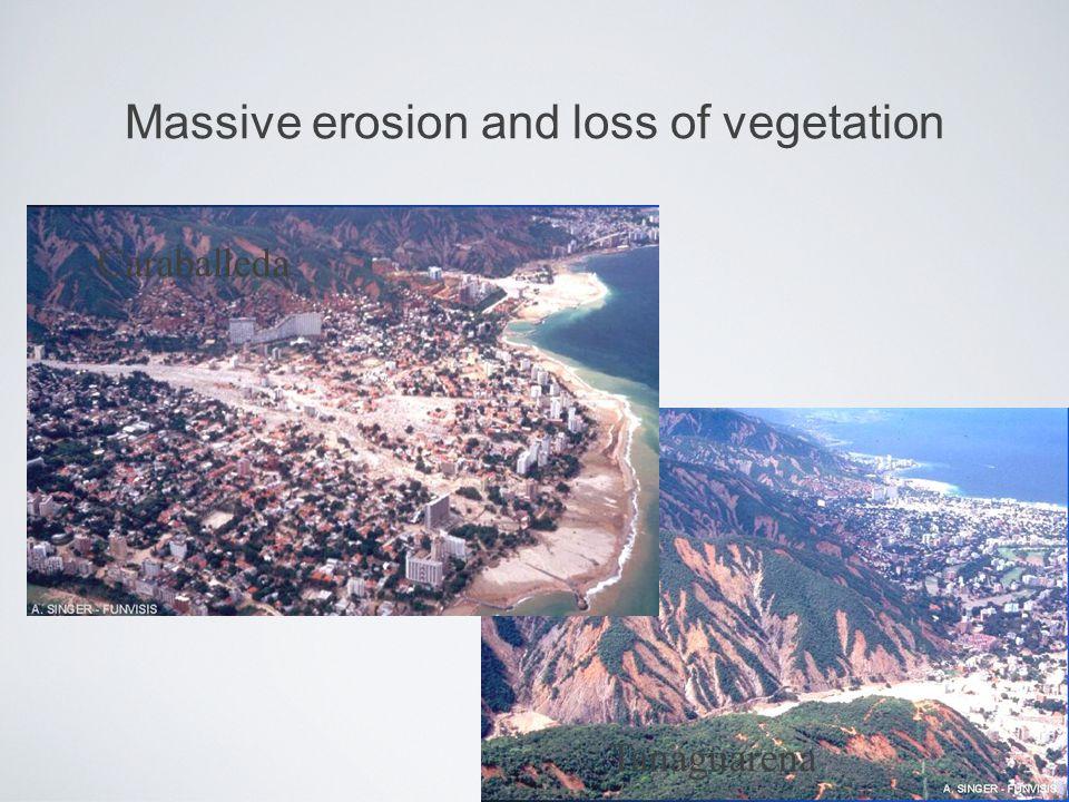Massive erosion and loss of vegetation Caraballeda Tanaguarena