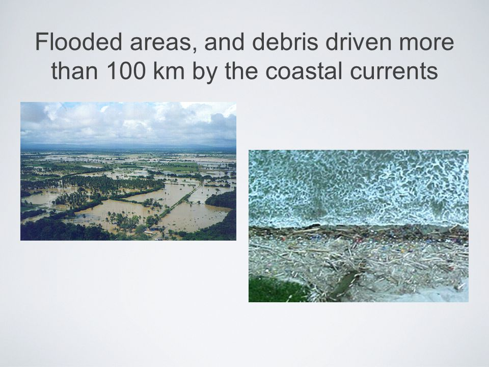 Flooded areas, and debris driven more than 100 km by the coastal currents