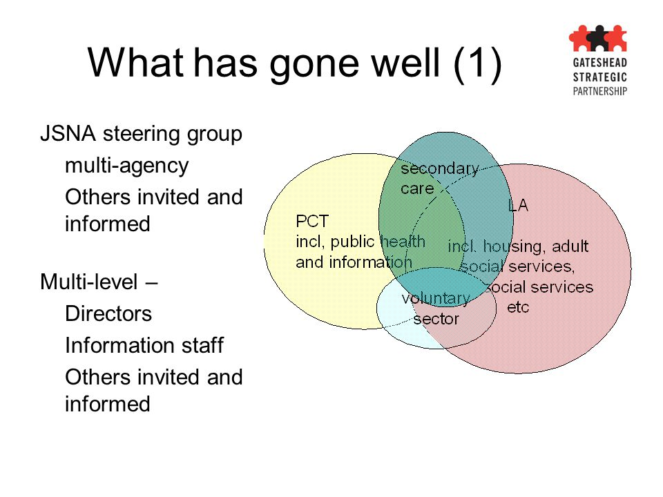 What has gone well (1) JSNA steering group multi-agency Others invited and informed Multi-level – Directors Information staff Others invited and infor