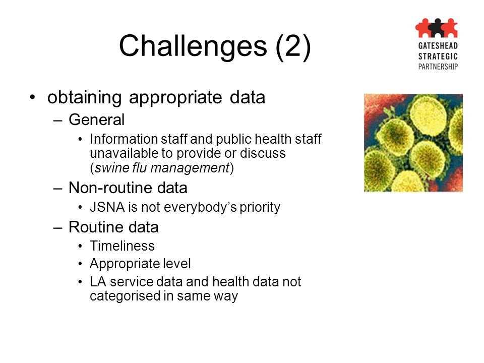 Challenges (2) obtaining appropriate data –General Information staff and public health staff unavailable to provide or discuss (swine flu management)
