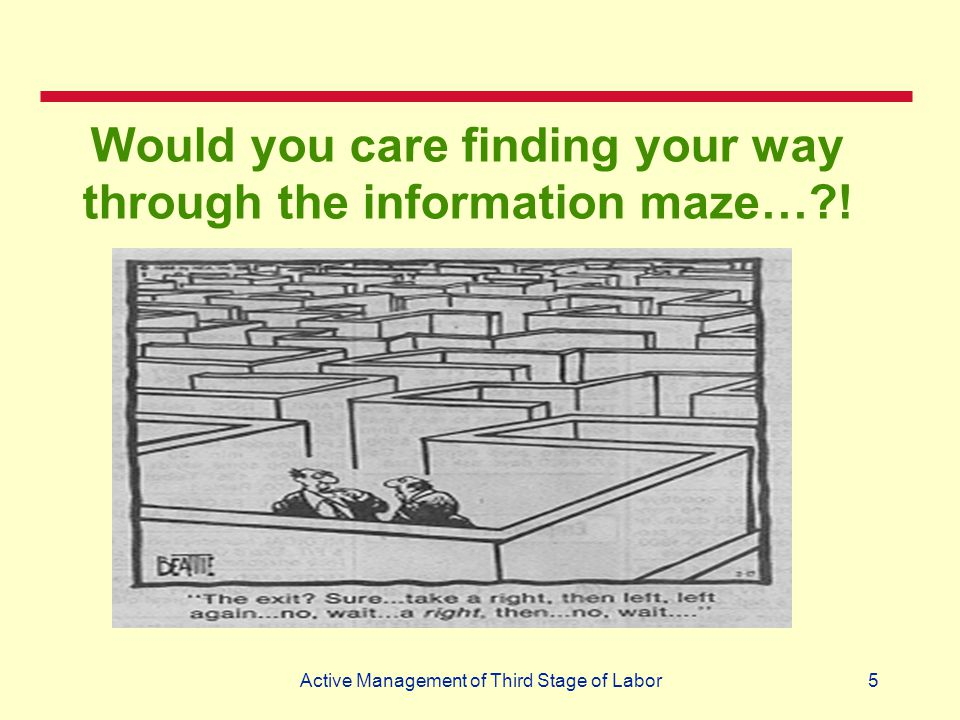 5 Would you care finding your way through the information maze…?!