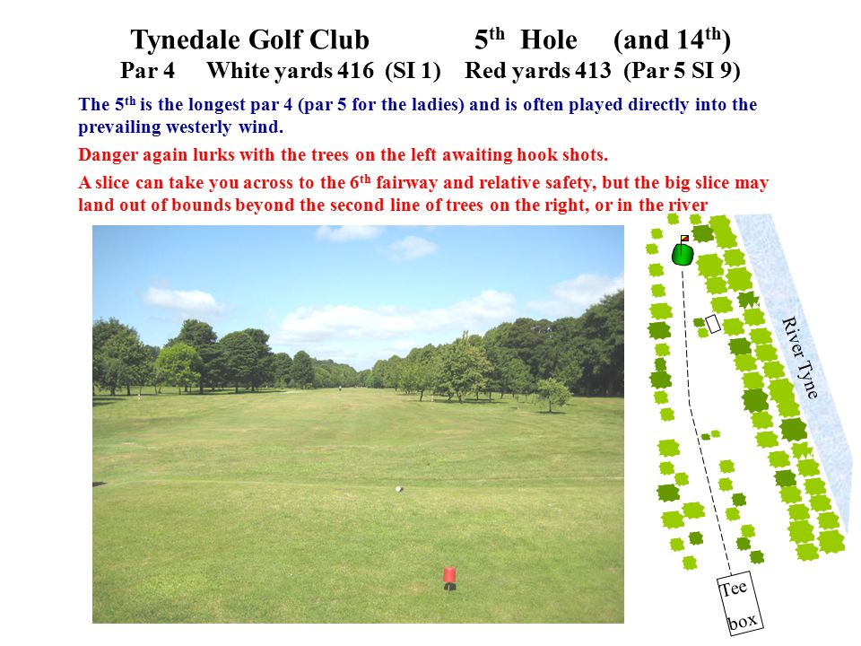 The 5 th is the longest par 4 (par 5 for the ladies) and is often played directly into the prevailing westerly wind. Danger again lurks with the trees