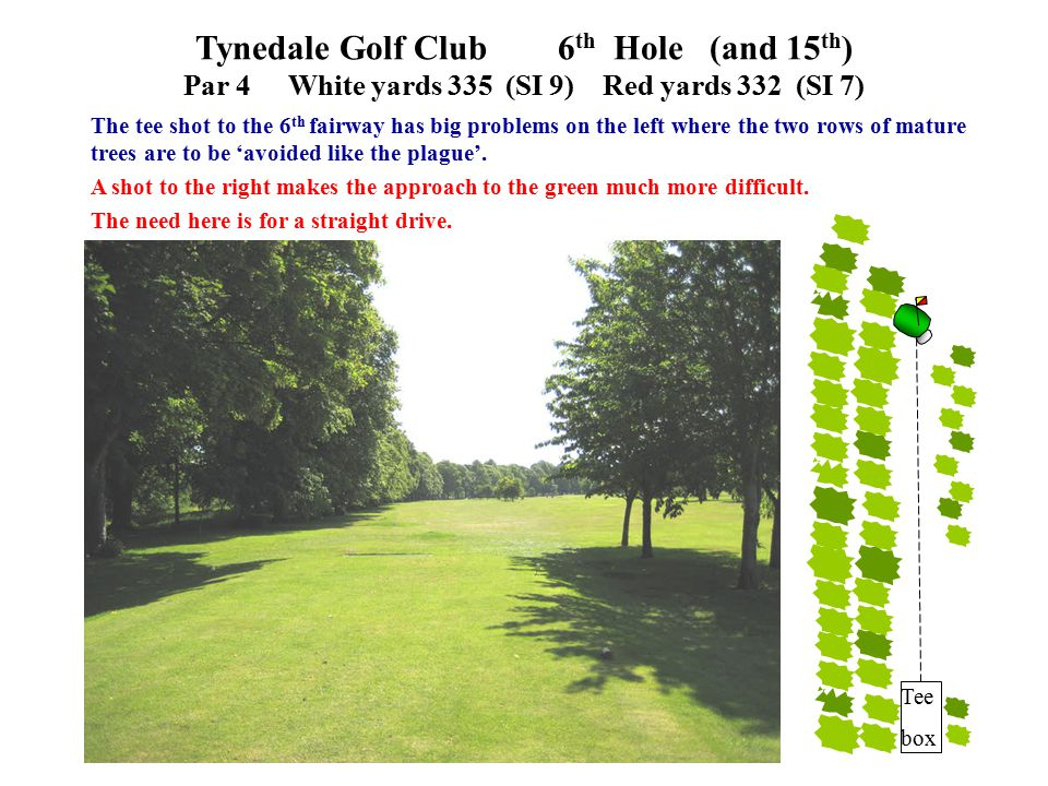 The tee shot to the 6 th fairway has big problems on the left where the two rows of mature trees are to be 'avoided like the plague'. A shot to the ri