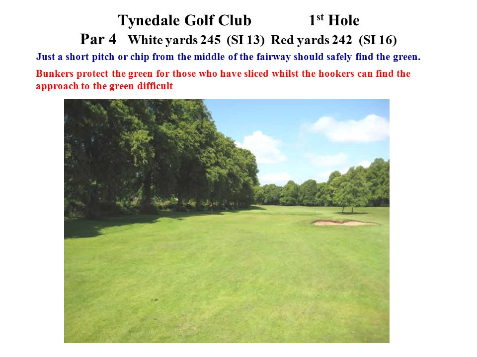 Just a short pitch or chip from the middle of the fairway should safely find the green.
