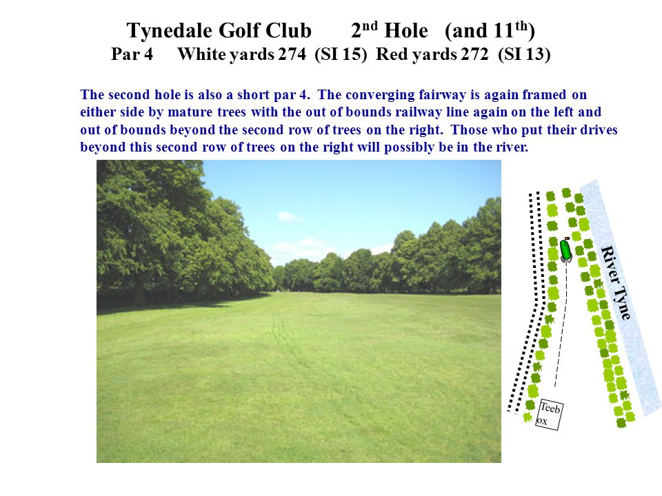 The second hole is also a short par 4. The converging fairway is again framed on either side by mature trees with the out of bounds railway line again