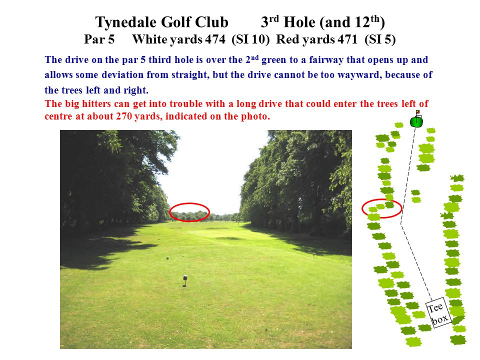 The drive on the par 5 third hole is over the 2 nd green to a fairway that opens up and allows some deviation from straight, but the drive cannot be too wayward, because of the trees left and right.