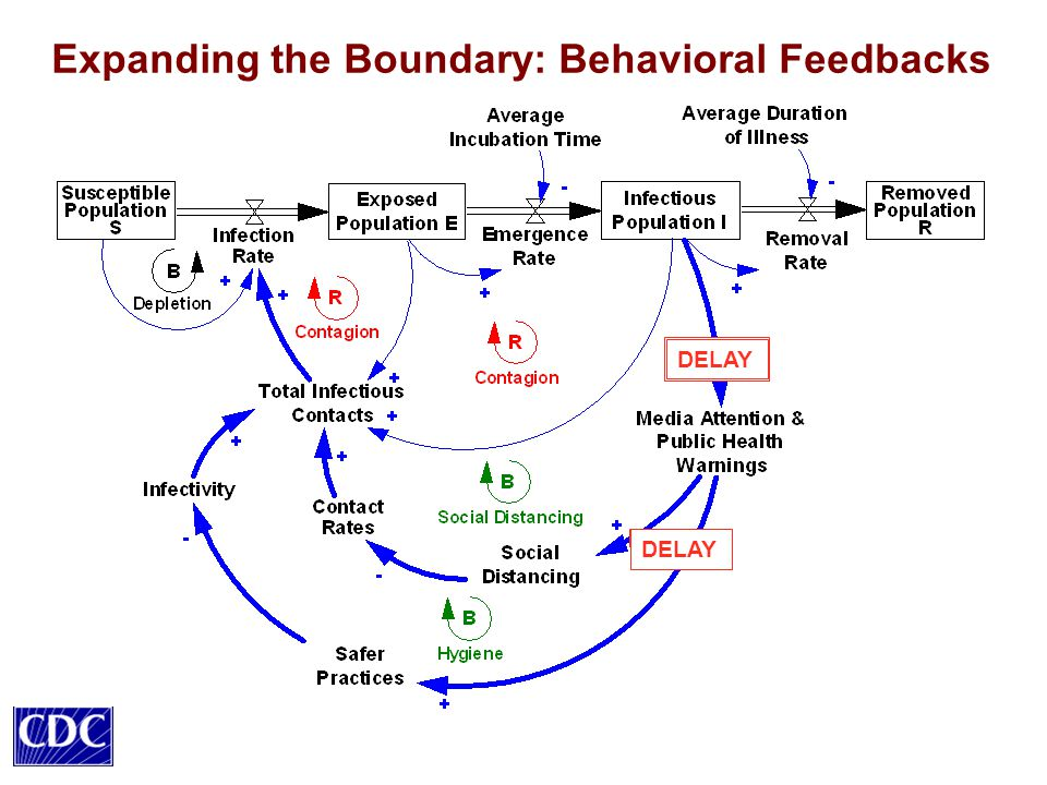 Expanding the Boundary: Behavioral Feedbacks DELAY