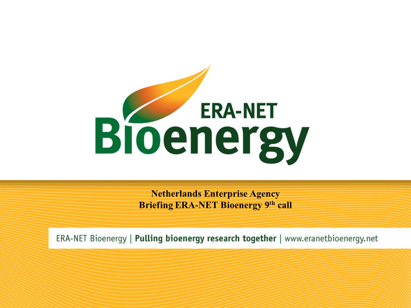 Netherlands Enterprise Agency Briefing ERA-NET Bioenergy 9 th call